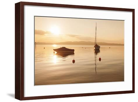 Sailing Boat at Sunset, Lake Constance, Near Konstanz, Baden-Wurttemberg, Germany, Europe-Markus Lange-Framed Art Print
