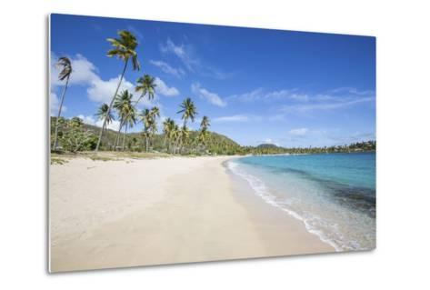 The Long Beach Surrounded by Palm Trees and the Caribbean Sea, Morris Bay, Antigua and Barbuda-Roberto Moiola-Metal Print