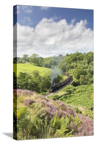 A Steam Locomotive Pulling Carriages Through Darnholme on North Yorkshire Steam Heritage Railway-John Potter-Stretched Canvas Print