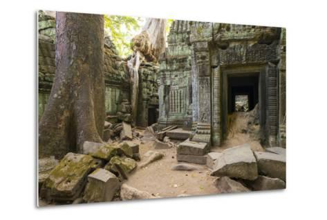 Ta Prohm Temple (Rajavihara), Angkor, UNESCO World Heritage Site, Siem Reap Province, Cambodia-Jason Langley-Metal Print