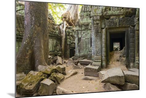 Ta Prohm Temple (Rajavihara), Angkor, UNESCO World Heritage Site, Siem Reap Province, Cambodia-Jason Langley-Mounted Photographic Print