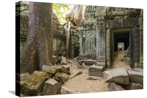 Ta Prohm Temple (Rajavihara), Angkor, UNESCO World Heritage Site, Siem Reap Province, Cambodia-Jason Langley-Stretched Canvas Print