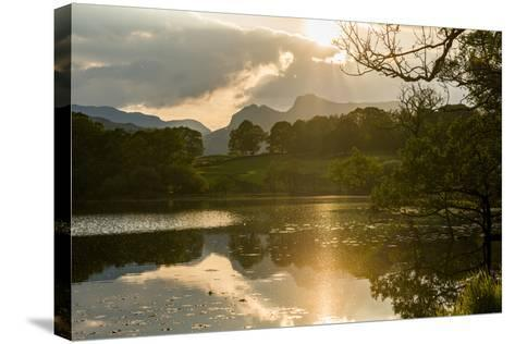 Sunset at Loughrigg Tarn Near Ambleside, Lake District National Park, Cumbria-Alex Treadway-Stretched Canvas Print