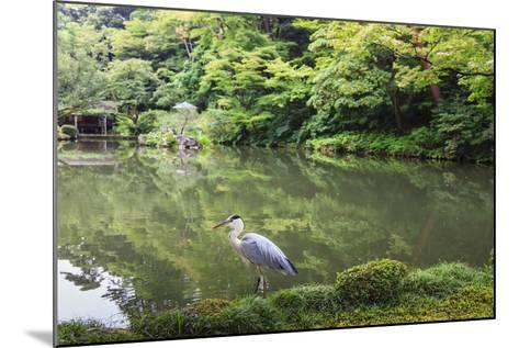 Stork at Hisagoike Pond in Summer, Kenrokuen, One of Japan's Three Most Beautiful Landscape Gardens-Eleanor Scriven-Mounted Photographic Print