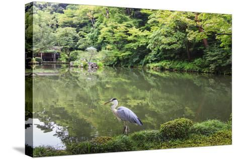 Stork at Hisagoike Pond in Summer, Kenrokuen, One of Japan's Three Most Beautiful Landscape Gardens-Eleanor Scriven-Stretched Canvas Print