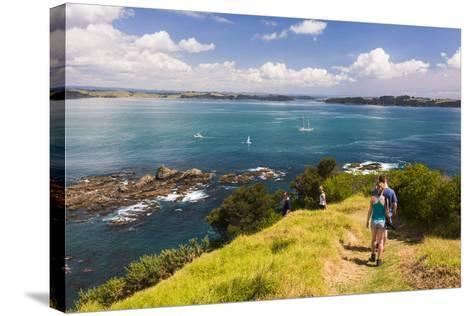 Family Walking on Tapeka Point, Russell, Northland Region, North Island, New Zealand, Pacific-Matthew Williams-Ellis-Stretched Canvas Print
