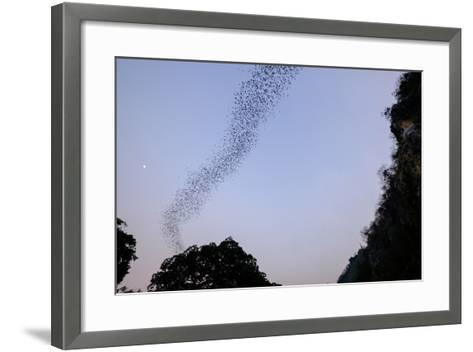 Bats Cave, Battambang, Battambang Province, Cambodia, Indochina, Southeast Asia, Asia-Nathalie Cuvelier-Framed Art Print