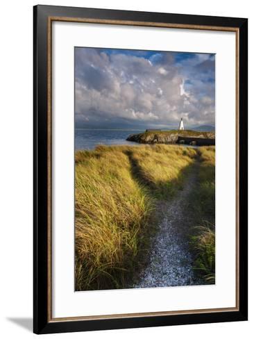 A Coastal Path Leading to Twr Mawr Lighthouse on Llanddwyn Island, Anglesey, Wales-Garry Ridsdale-Framed Art Print