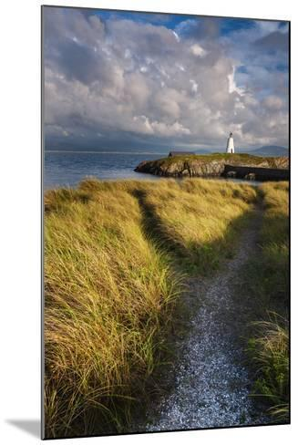 A Coastal Path Leading to Twr Mawr Lighthouse on Llanddwyn Island, Anglesey, Wales-Garry Ridsdale-Mounted Photographic Print