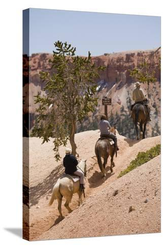 Horseback Riding Through Bryce Canyon National Park, Utah, United States of America, North America-Garry Ridsdale-Stretched Canvas Print