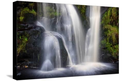 Posforth Gill Waterfall, Bolton Abbey, Yorkshire Dales, Yorkshire, England, United Kingdom, Europe-Bill Ward-Stretched Canvas Print