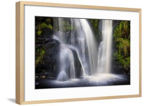 Posforth Gill Waterfall, Bolton Abbey, Yorkshire Dales, Yorkshire, England, United Kingdom, Europe-Bill Ward-Framed Art Print