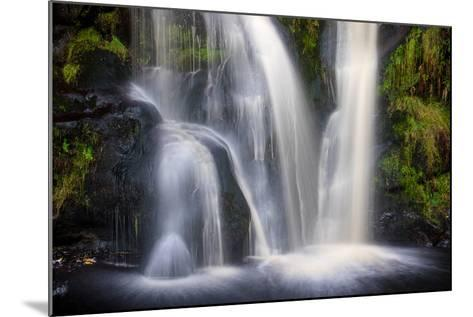 Posforth Gill Waterfall, Bolton Abbey, Yorkshire Dales, Yorkshire, England, United Kingdom, Europe-Bill Ward-Mounted Photographic Print