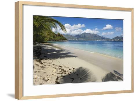 Palm Trees Providing Shade Along a Deserted Sandy Beach in the Seychelles, Indian Ocean, Africa-Garry Ridsdale-Framed Art Print