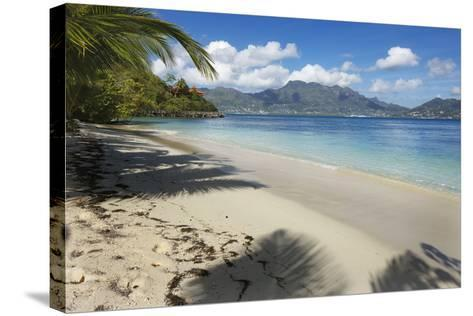 Palm Trees Providing Shade Along a Deserted Sandy Beach in the Seychelles, Indian Ocean, Africa-Garry Ridsdale-Stretched Canvas Print