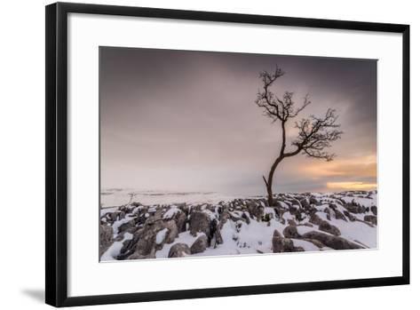 Twistleton Scar End in Snow, Ingleton, Yorkshire Dales, Yorkshire, England, United Kingdom, Europe-Bill Ward-Framed Art Print