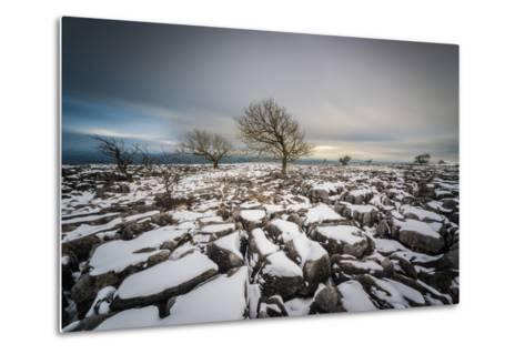 Twistleton Scar End in Snow, Ingleton, Yorkshire Dales, Yorkshire, England, United Kingdom, Europe-Bill Ward-Metal Print
