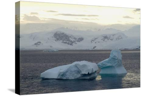 Cuverville Island, Antarctica-Natalie Tepper-Stretched Canvas Print