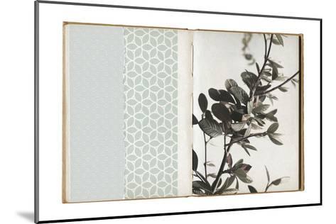 Field Notes 8-Art Kitchen-Mounted Premium Giclee Print