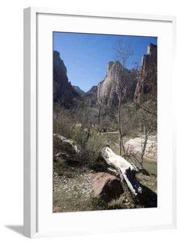 The Virgin River Running Through Zion Canyon National Park, Utah, Usa-Natalie Tepper-Framed Art Print