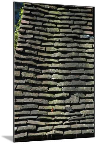Detail of Rough Grey Vernacular Roof Tiles-Natalie Tepper-Mounted Photo