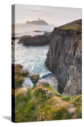 Coastal Cliffs, Godrevy Point, Nr St Ives, Cornwall, England-Paul Harris-Stretched Canvas Print