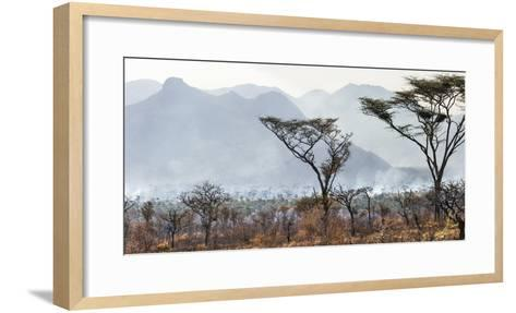 Uganda, Kidepo. the Deliberate Burning of Tall Grass Takes Place Soon after the Rainy Season-Nigel Pavitt-Framed Art Print