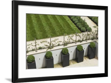 Topiary Balls in Powder-Coated Steel Containers Along the Retaining Wall-Pedro Silmon-Framed Art Print