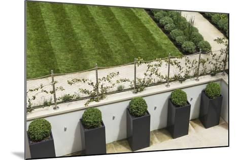 Topiary Balls in Powder-Coated Steel Containers Along the Retaining Wall-Pedro Silmon-Mounted Photo