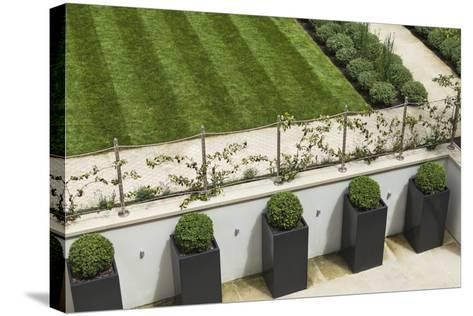 Topiary Balls in Powder-Coated Steel Containers Along the Retaining Wall-Pedro Silmon-Stretched Canvas Print