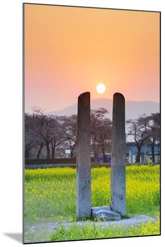 Asia, Republic of Korea, South Korea, Gyeongsangbuk-Do, Gyeongju-Christian Kober-Mounted Photographic Print