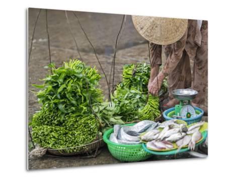 Vietnam, Quang Nam Province-Nigel Pavitt-Metal Print