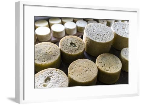 Queserýa Rogelio Lopez Campo, Cabrales Cheese Maker, at Sotres, Asturias, Spain-Carlos Sanchez Pereyra-Framed Art Print