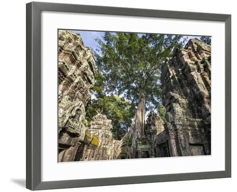 Cambodia, Ta Prohm, Siem Reap Province. the Ruins of the Buddhist Temple of Ta Prohm-Nigel Pavitt-Framed Art Print