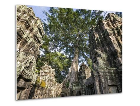 Cambodia, Ta Prohm, Siem Reap Province. the Ruins of the Buddhist Temple of Ta Prohm-Nigel Pavitt-Metal Print