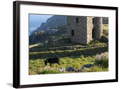Old Tin Mine Workings, Botallack, Pendeen,Cornwall, England-Paul Harris-Framed Art Print