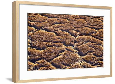 Ethiopia, Dallol-Nigel Pavitt-Framed Art Print