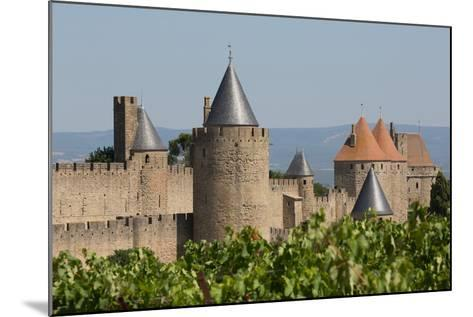The Medieval Walled Town of Carcassonne, Languedoc-Roussillon, France, Europe-Martin Child-Mounted Photographic Print