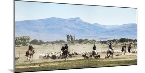 Gauchos Riding Horses to Round Up Sheep, El Chalten, Patagonia, Argentina, South America-Matthew Williams-Ellis-Mounted Photographic Print
