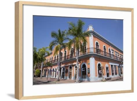Colonial Buildings, Near Machado Square, Mazatlan, Sinoloa State, Mexico, North America-Richard Maschmeyer-Framed Art Print