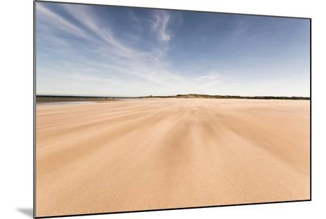 Budle Bay, Looking Towards Bamburgh, Northumberland, England, United Kingdom, Europe-Bill Ward-Mounted Photographic Print