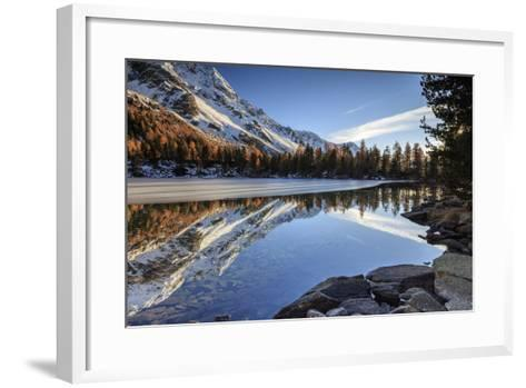 Colourful Woods are Reflected in Saoseo Lake Still Partially Frozen, Switzerland-Roberto Moiola-Framed Art Print