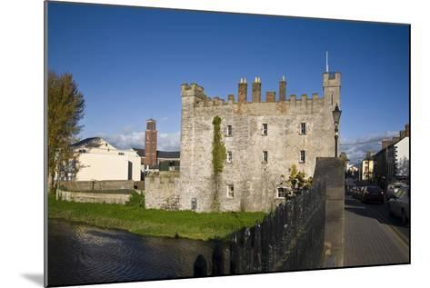 White's Castle,Bridge over the River Barrow,Athy, Co Kildare, Ireland--Mounted Photographic Print