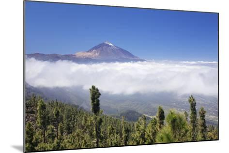 View over Orotava Valley to Pico Del Teide, National Park Teide, Tenerife, Canary Islands, Spain-Markus Lange-Mounted Photographic Print