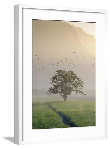 Rice-Field in Karstic Landscape, Hpa An, Kayin State (Karen State), Myanmar (Burma), Asia-Nathalie Cuvelier-Framed Art Print