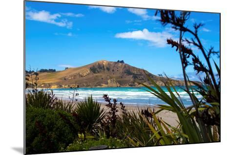 Waikouaiti Reserve, Otago, South Island, New Zealand, Pacific-Suzan Moore-Mounted Photographic Print