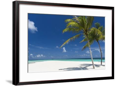 Palm Trees and Tropical Beach, Maldives, Indian Ocean, Asia-Sakis Papadopoulos-Framed Art Print