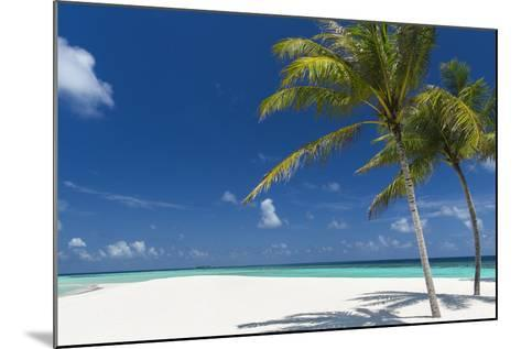Palm Trees and Tropical Beach, Maldives, Indian Ocean, Asia-Sakis Papadopoulos-Mounted Photographic Print