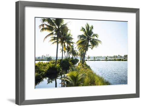Backwaters Near North Paravoor, Kerala, India, South Asia-Ben Pipe-Framed Art Print