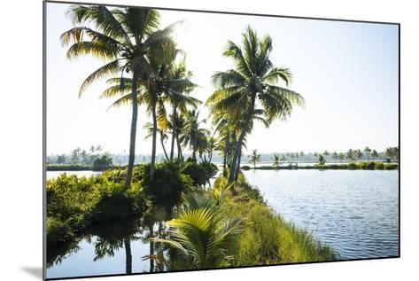Backwaters Near North Paravoor, Kerala, India, South Asia-Ben Pipe-Mounted Photographic Print